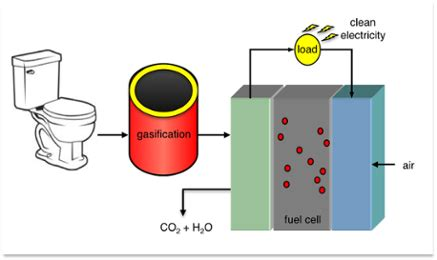 Research paper on biofuel production